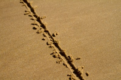 line in sand